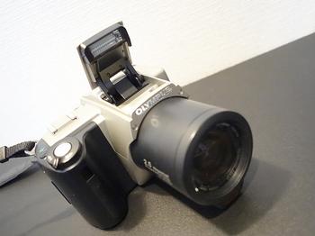 DSC06652.JPG