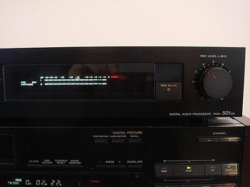 DSC05423.JPG