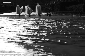 161210-04-fountain-mono-nd.jpg