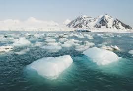Arctic2.jfif