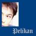PELIKANさんの画像