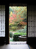 Hiro_M.さんの画像