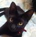 mitsuyaさんの画像