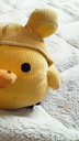 izu3さんの画像