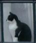だめ&ひまひまリーマンさんの画像