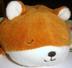 HIROMIさんの画像