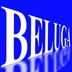 belugaさんの画像