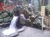 陽陵泉さんの画像