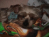 motchiさんの画像