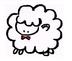 y-kumikoさんの画像