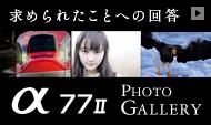 ILCA-77M2 フォトギャラリー