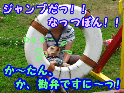 IMG_4517.jpg