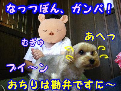IMG_5441.jpg