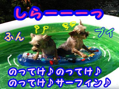 IMG_5476.jpg