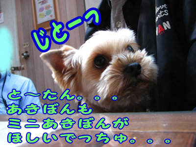 IMG_5939.jpg