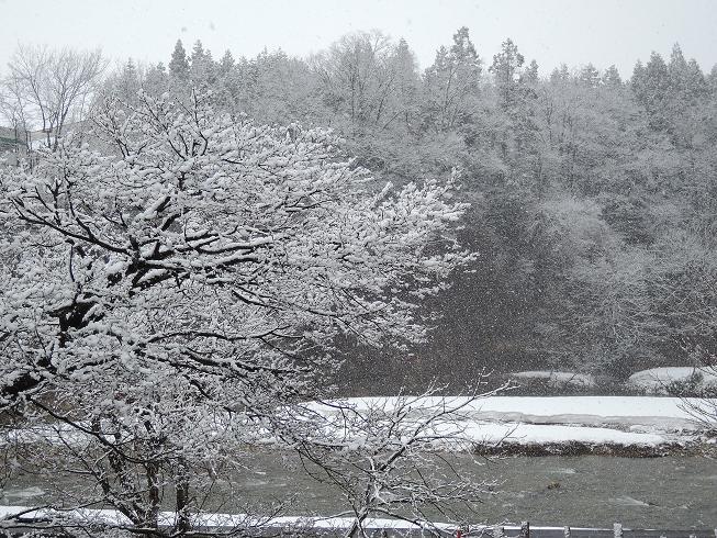 弥生の雪.jpg
