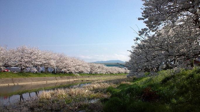 瑞梅寺川にて2.jpg