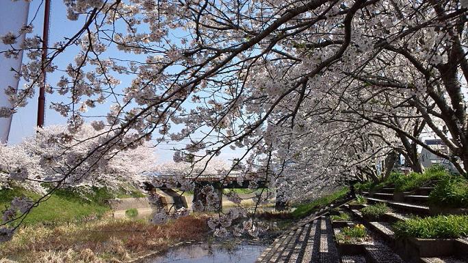 瑞梅寺川にて3.jpg