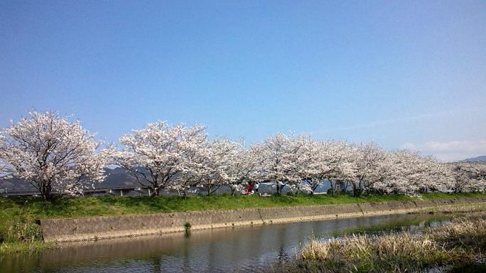 瑞梅寺川にて4.jpg