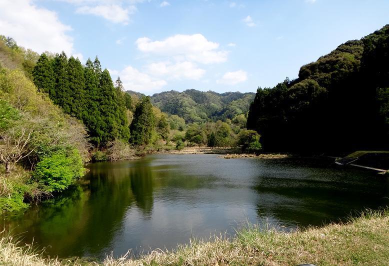 53 行き止まりには綺麗な池がありました.JPG