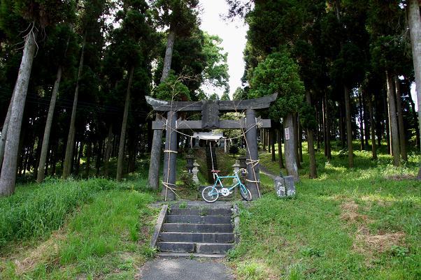 サイクリングロードはこの神社で引き返します.JPG