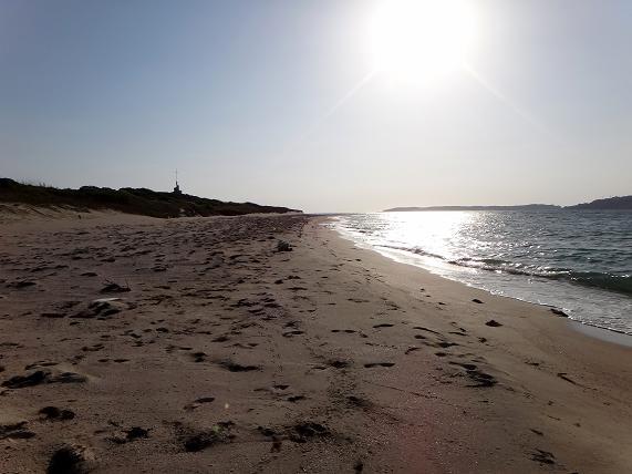 白い砂浜.JPG