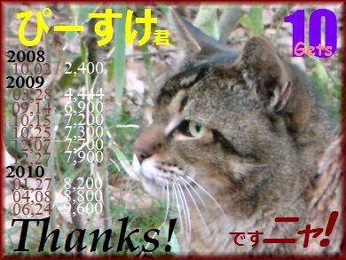 10 th Thanks ! ぴーすけ君。.jpg