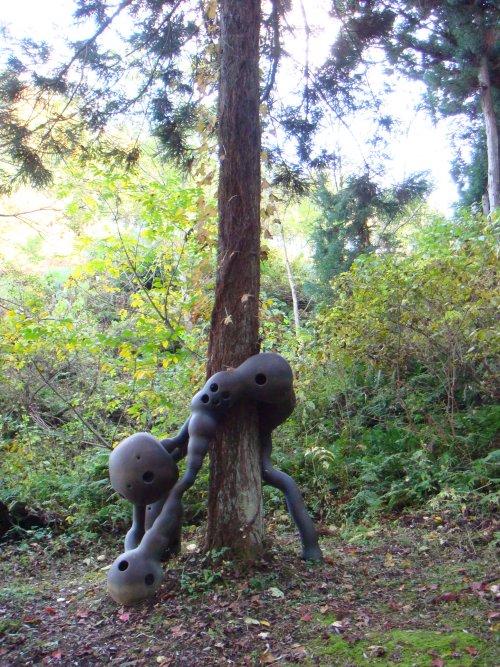 杉の根元に息づく生き物のようだね…。雪国の杉の木は雪の重みで根曲がりして... 橋本真之/雪国の