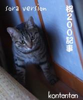 そらso-net60823-b943a.jpg