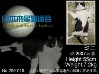 木星猫連合会員証No_16E38080E38381E383A3E382B326E3839FE3838BE38195E38293E38080E3839FE3838BE38195E38293-67850.jpg