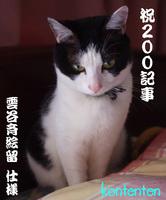 雲谷斉絵留so-net60819-a1620.jpg