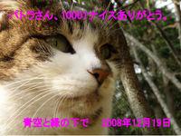 10001_081219-1ec74.jpg