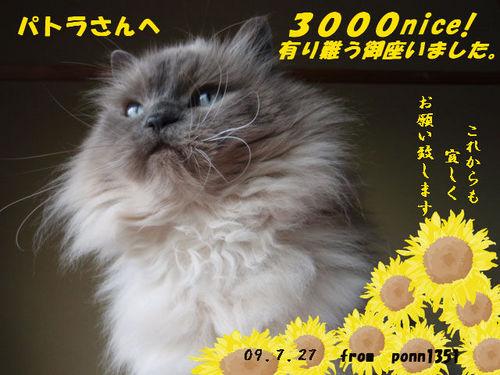 ponntaさんの3000niceカード.jpg