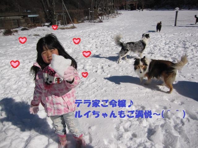 2012-02-11 雪遊び2012 007.jpg-1.jpg