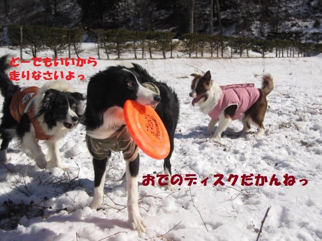 2012-02-11 雪遊び2012 019.jpg-1.jpg