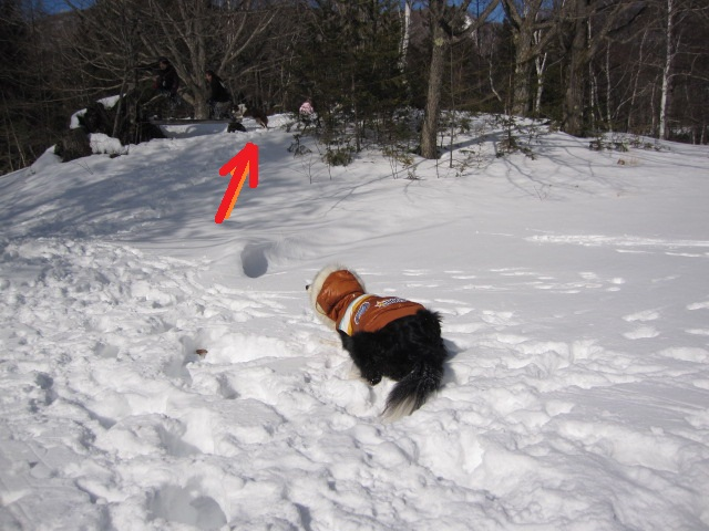 2012-02-11 雪遊び2012 031.jpg-1.jpg