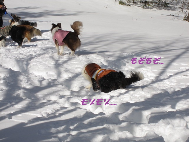 2012-02-11 雪遊び2012 032.jpg-1.jpg