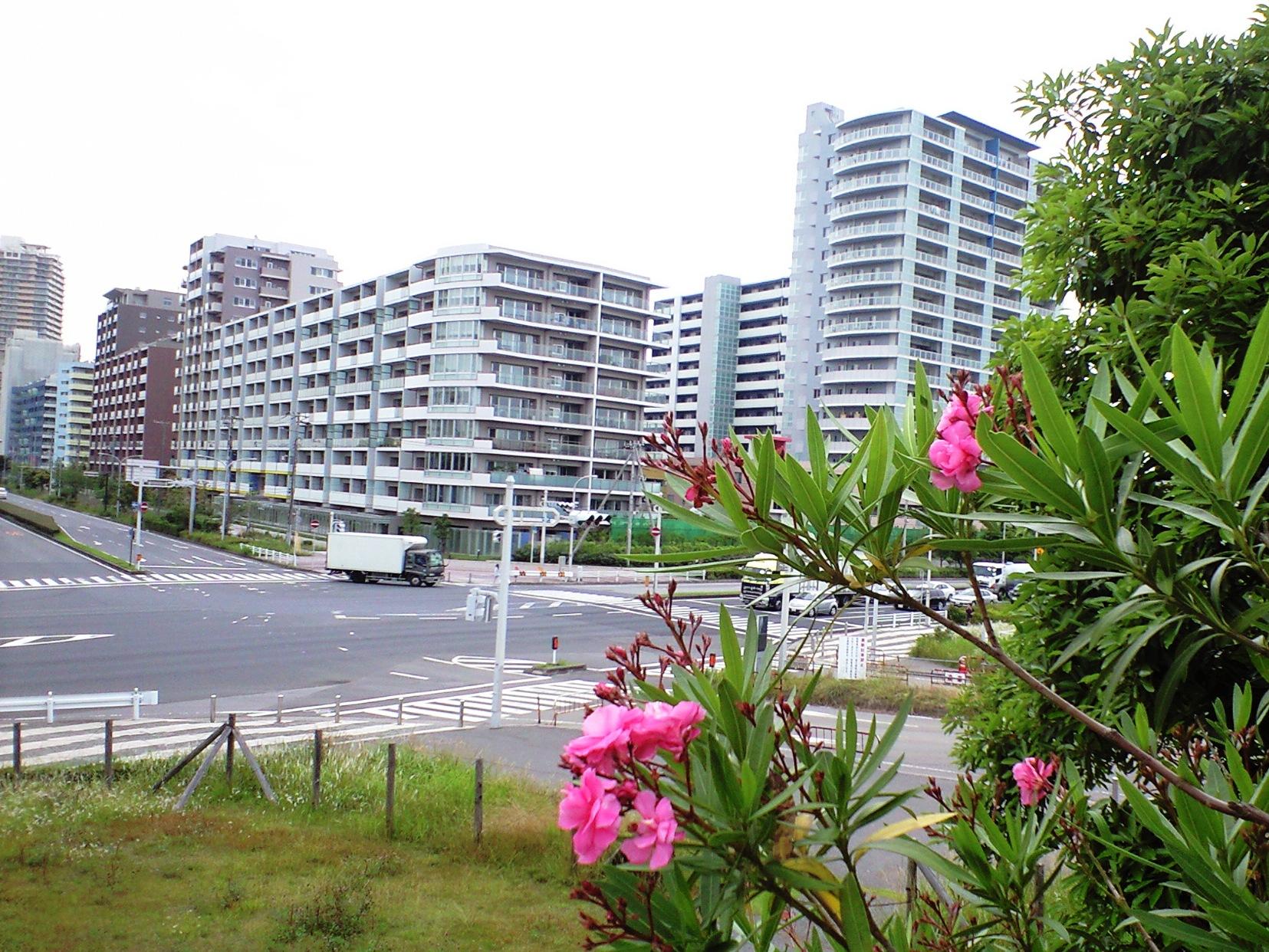 20090612_09_幕張.JPG