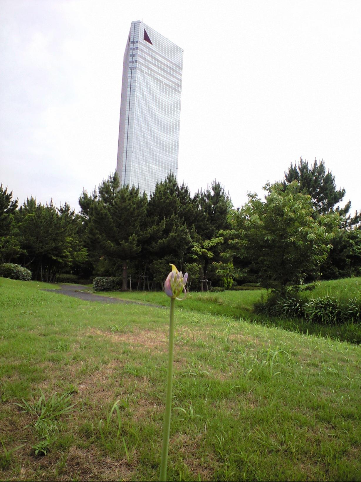 20090612_10_幕張.JPG