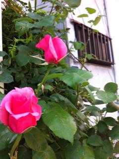 image-20140508185133.png