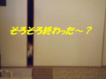 DSCF2298_2.JPG