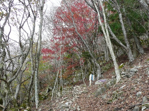 20091121観音岳 042.jpg