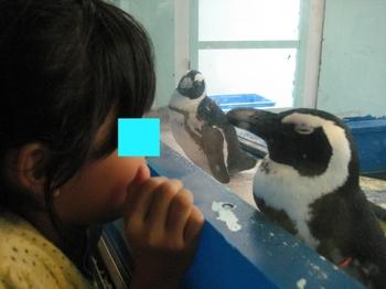 サル子&ペンギン 2.jpeg