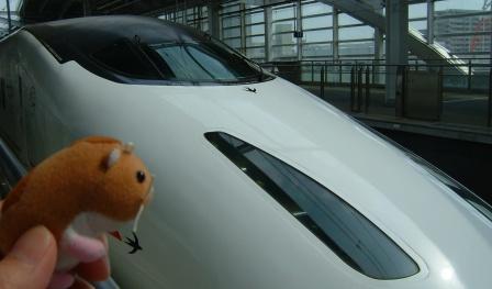 熊本出張 115.jpg