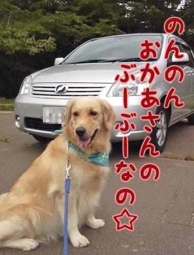 のんのんの.jpg
