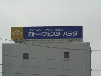 P1000174.jpg