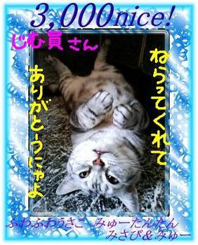 3000jimuin-san-6156b.jpg