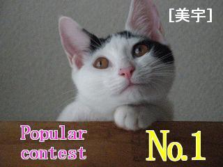 popular20contest20NO_1E7BE8EE5AE87.jpg