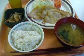 白米 ・ 豚マヨ炒め ・ きんぴらごぼう ・ わかめの味噌汁