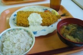 秋刀魚フライ・サマランス米・わかめのお味噌汁